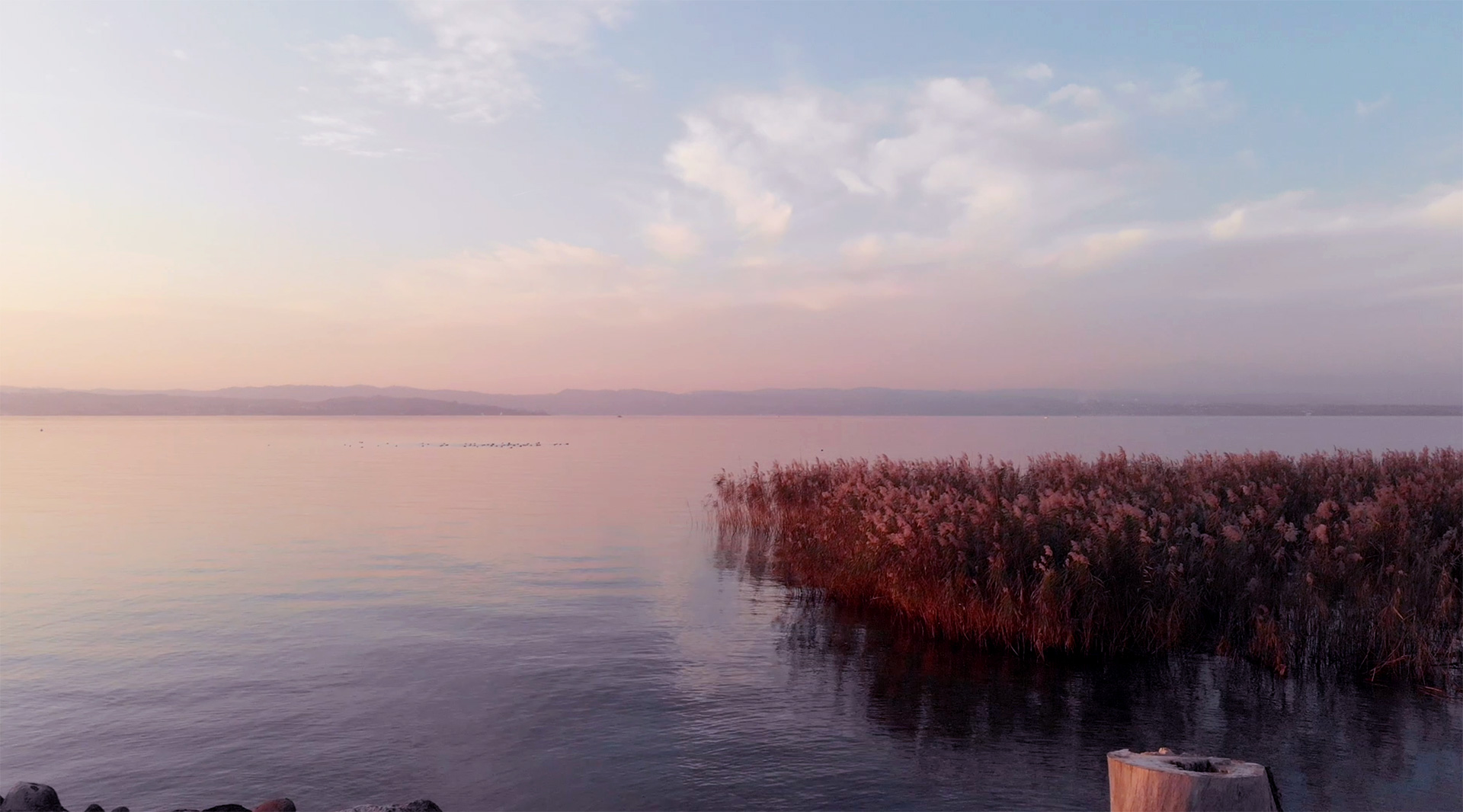 Lago di Garda Sirmione tramonto